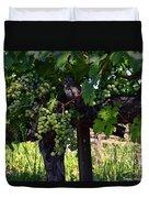 Inglenook Vineyard -11 Duvet Cover