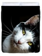 Inquisitive Kitty Duvet Cover