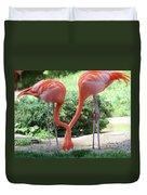 Intertwined Flamingoes Duvet Cover