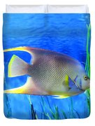 Into Blue - Tropical Fish By Sharon Cummings Duvet Cover