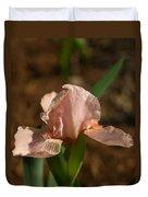 Iris Peach Rose 1 Duvet Cover
