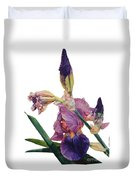 Watercolor Of A Tall Bearded Iris In A Color Rhapsody Duvet Cover