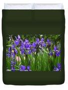 Irises In Spring Duvet Cover