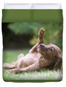 Irish Setter Puppy Duvet Cover