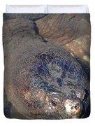 Island Turtle Duvet Cover