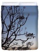 Jacaranda Sunset Duvet Cover by Rona Black