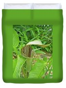 Jack In The Pulpit - Arisaema Triphyllum Duvet Cover