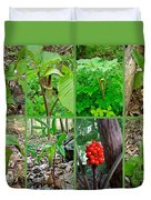 Jack-in-the-pulpit Wildflower    Arisaema Triphyllum Duvet Cover