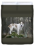 Jack Russell Dog In Autumn Setting Duvet Cover