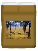 Jackals On Savanna. Safari In Serengeti. Tanzania. Africa Duvet Cover