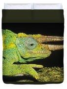 Jacksons Chameleon Male East Africa Duvet Cover
