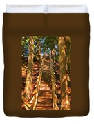 Jacobs Ladder Duvet Cover