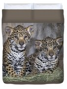 Jaguar Cubs Duvet Cover