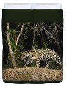 Jaguar Cuiaba River Brazil Duvet Cover
