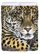 Jaguar Portrait Wildlife Rescue Duvet Cover by Dave Welling