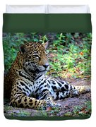 Jaguar Resting From Play Duvet Cover