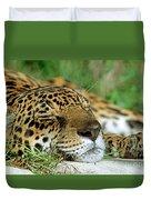 Jaguar Resting Duvet Cover