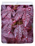 Japanese Acer Palmatum Atropurpurea Shrub Duvet Cover