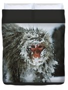 Japanese Macaque Covered In Snow Japan Duvet Cover