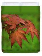 Japanese Maple Autumn Colors Duvet Cover