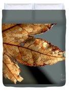 Japanese Maple Leaf Brown - 2 Duvet Cover
