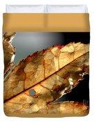 Japanese Maple Leaf Brown - 4 Duvet Cover