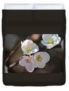 Japanese Quince 4 Duvet Cover