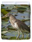 Javan Pond Heron With A Fish Dthn0069 Duvet Cover
