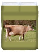 Jersey Cow In Pasture Duvet Cover