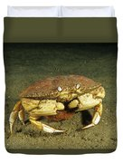Jonah Crab Duvet Cover