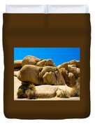 Joshua Tree 29 Duvet Cover