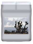 Joshua Tree Forest Ivanpah Valley Duvet Cover