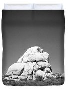 Joshua Tree Holga 9 Duvet Cover
