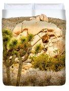 Joshua Tree National Park Skull Rock Duvet Cover