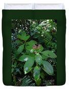 jungle in La Amistad National Park Panama 4 Duvet Cover