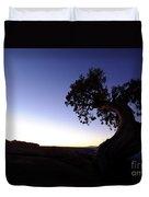 Juniper Tree At Dawn Duvet Cover