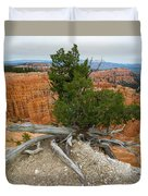 Juniper Tree Clings To The Canyon Edge Duvet Cover