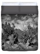 Juniper Trees At The Ghost Ranch Black And White Duvet Cover
