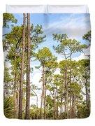 Ancient Looking Florida Forest At Aubudon Corkscrew Swamp Sanctuary Duvet Cover