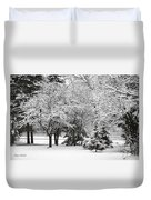 Just After A Snowfall Duvet Cover by Mary Machare