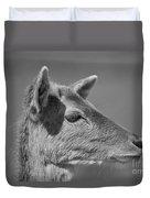 Juvenile Deer Close-up V2 Duvet Cover