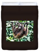 Juvenile Orangutan Borneo Duvet Cover