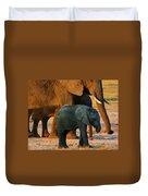 Kalahari Elephants Duvet Cover