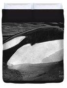Kandu Orca Seattle Aquarium 1969 Pat Hathaway Photo Killer Whale Seattle Duvet Cover