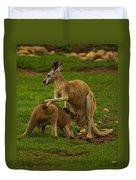 Kangaroo Nursing Its Joey Duvet Cover