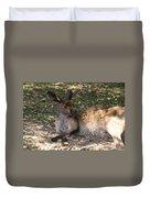 Kangaroos Duvet Cover