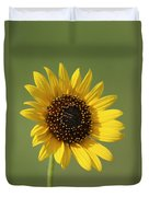 Kansas Wildsunflower With Green Background Duvet Cover