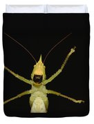 Katydid Underside Ecuador Duvet Cover