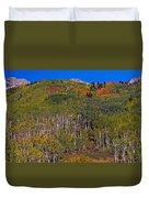 Kebler Pass Panorama Duvet Cover
