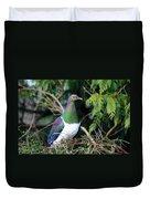 Kerehu - New Zealand Wood Pigeon Duvet Cover